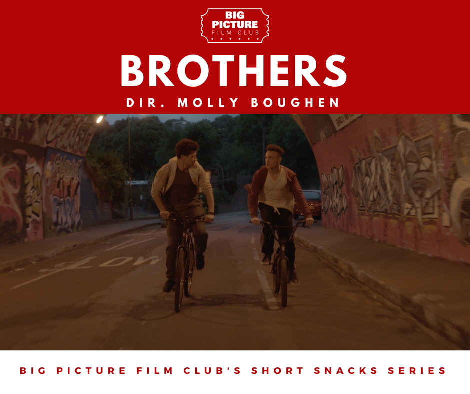 Brothers Dir. Molly Boughen - Big Picture Film Club