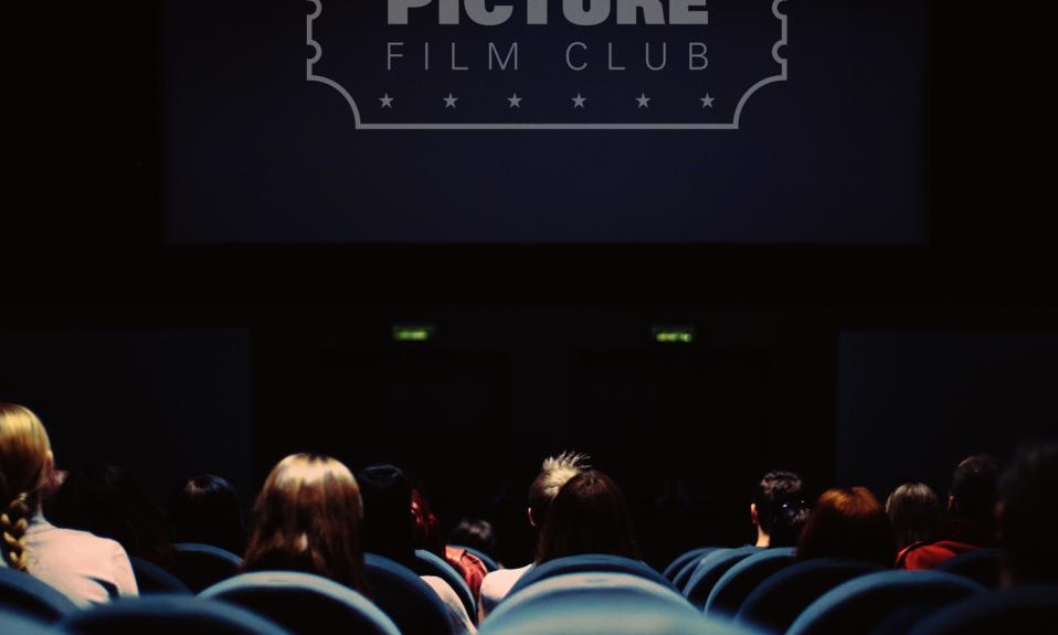 Big Picture Film Club Website Banner