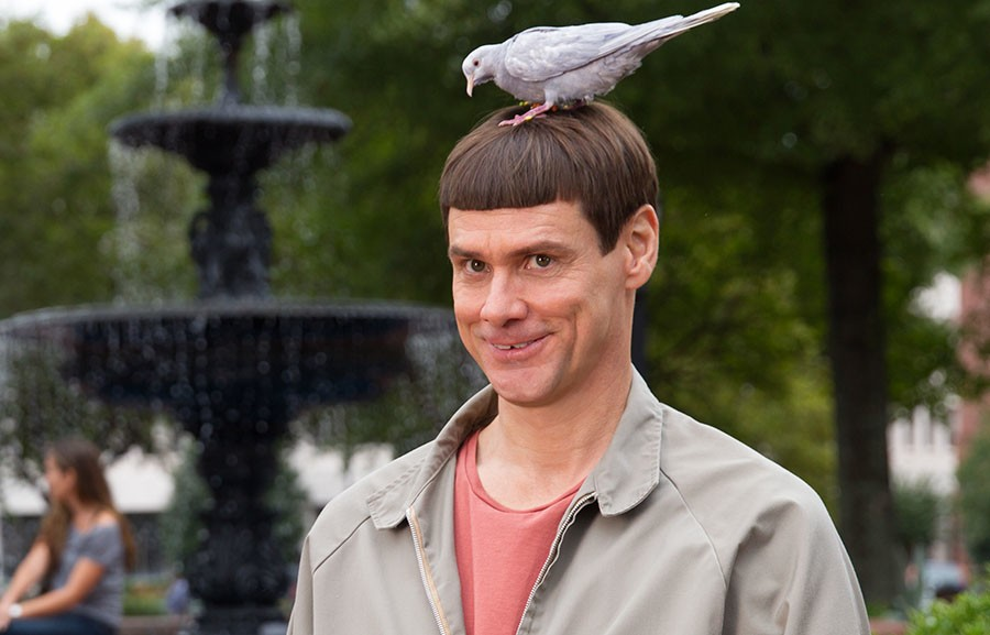 Carrey as one half of the iconic Dumb and Dumber leads (1994)
