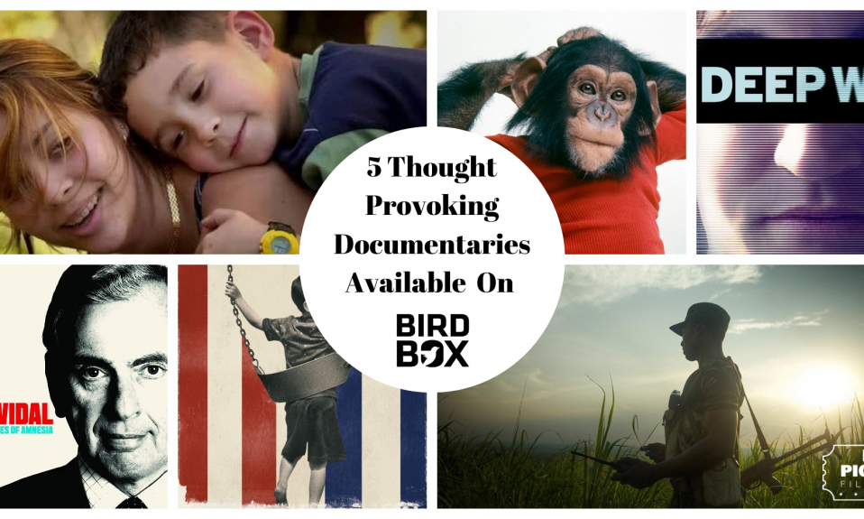 BirdBox.Film Documentaries