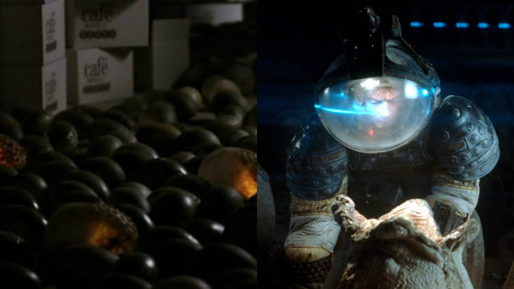 Alien eggs on Earth and on LV-426